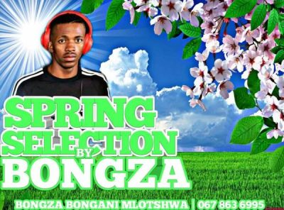 Bongza – Spring Selection Mix