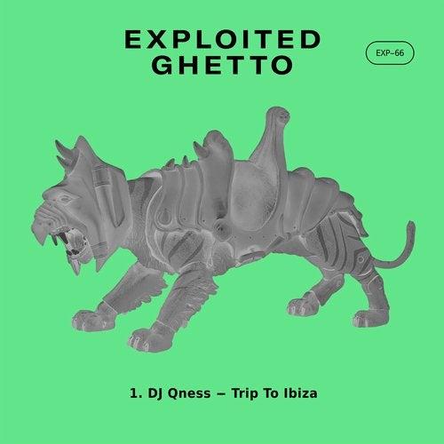 DJ Qness – Trip To Ibiza (Original Mix)