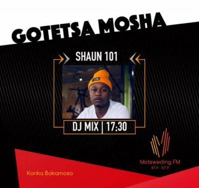 Shaun101 - Musical Invasion (Motsweding FM Mix)