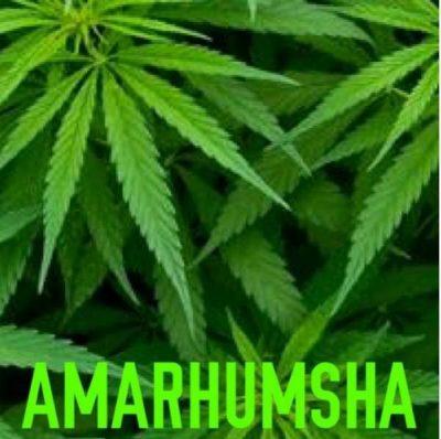 AmaRhumsha – Isivungu Vungu
