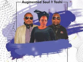 Augmented Soul, Toshi – Amaphupho (Guitar Mix)