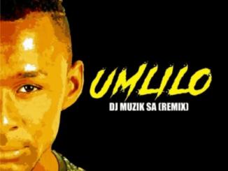 DJ Zinhle – Umlilo (DJ Muzik SA Remix)