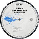 China Charmeleon – Reflection