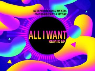 DJ Expertise – All I Want (Ben Da Producer Remix)