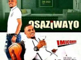 Osaziwayo – Sisayibambile