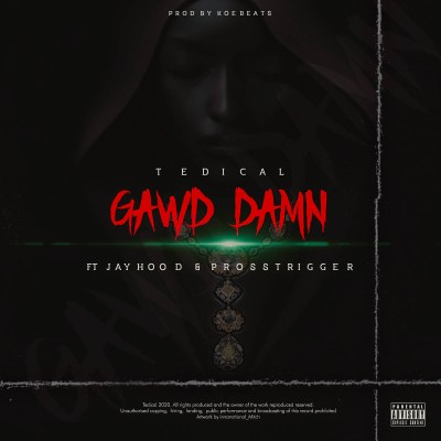Tedical – Gawd Damn ft. Jayhood & Pross Trigger