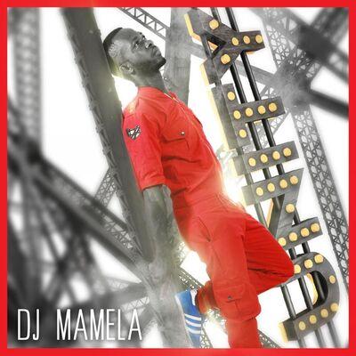 DJ Mamela – Family ft. Ntsako