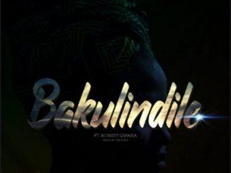 Stilo Magolide – Bakulindile ft. Aubrey Qwana