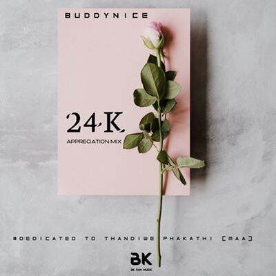 Buddynice – 24K Appreciation Mix (Dedicated to Thandiwe)