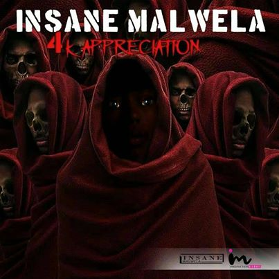 Insane Malwela – 4k Appreciation Mix