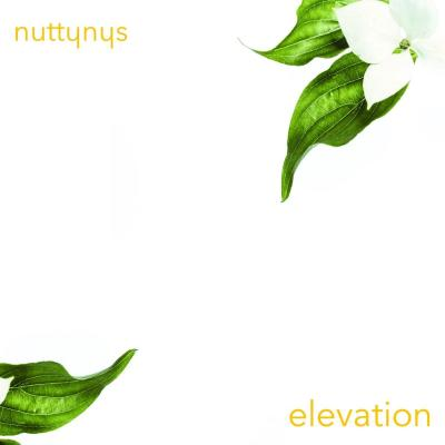 Nutty Nys – Elevation
