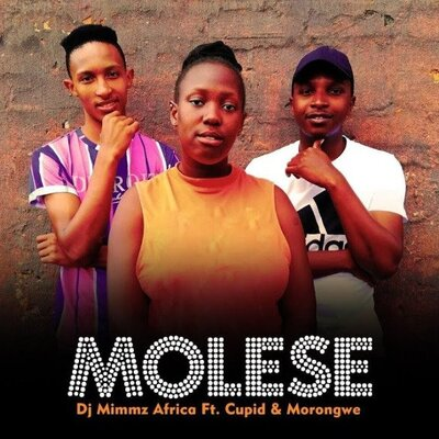 Dj Mimmz Africa – Molese ft. Cupid & Morongwe