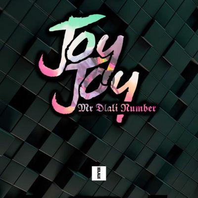 Mr Dlali Number – Joy Joy