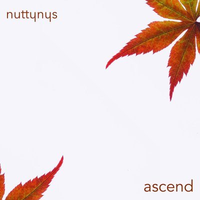 Nutty Nys – Ascend