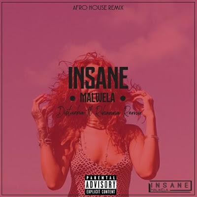 Rihanna – Disturbia (Insane Malwela's Afro House Remix)