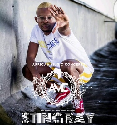 StingRay – Gqom Fridays Mix Vol 151