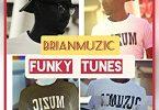 BrianMuzic – Funky Tunes (Original Mix)