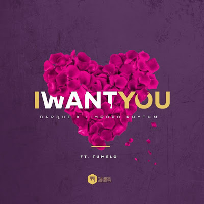 Darque & Limpopo Rhythm – I Want You ft. Tumelo