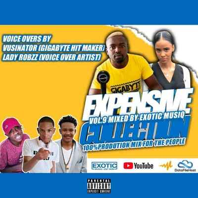 Expensive Collection Vol. 9 - Unlimited Soul & Exotic Musiq