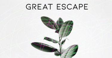 Viral Gucci – Great Escape
