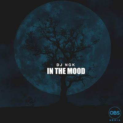 DJ NGK – Am In The Mood (Afro Drum Mix)