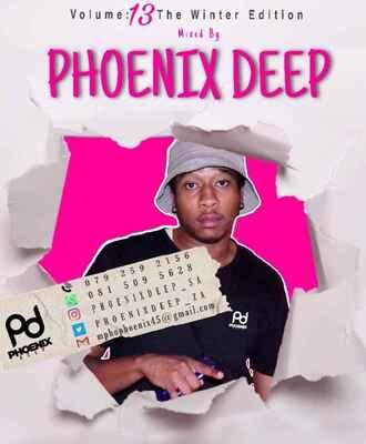 Phoenix Deep – The New Age Fundamentals Volume 13