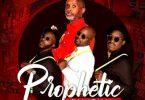 Afrikan Roots – Prophetic Grace ft. Nontsi