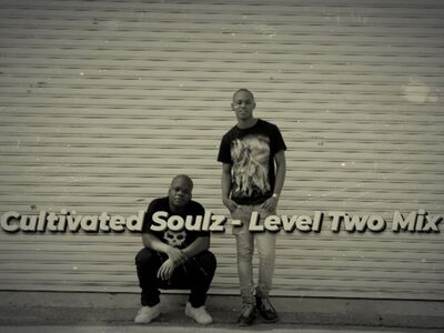 Cultivated Soulz – Level Two Mix