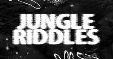 Mr Blasé – Jungle Riddles (Original Mix)