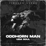 Vida Soul – Oddhorn Man (Original Mix)