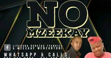 Bobstar no Mzeekay – The Chosen One's