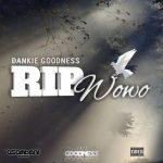Dankie Goodness – RIP Wowo