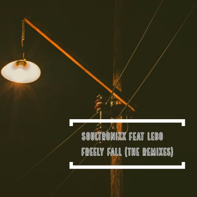 Soultronixx – Freely Fall (Dustinho Healthy Cut Remix) Ft. Lebo