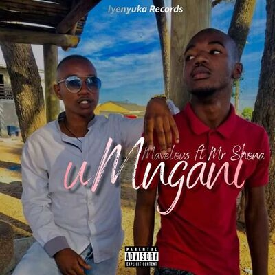 Dj Mavelous – uMngani ft. Mr Shona