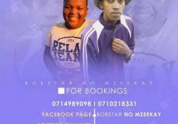 Bobstar no Mzeekay – 45 Minutes Of Destruction (44K Followers Appreciation Mix)