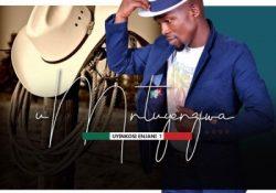 Umntuyenziwa – Ngibambe Iqili