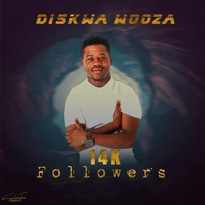 Diskwa – 14K Followers Package