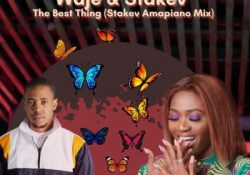 Waje – The Best Thing ft. Stakev (Stakev Amapiano Mix)